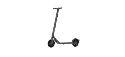 Ninebot by Segway KickScooter E25E