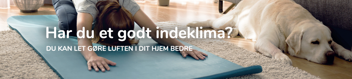 Har du et godt indeklime? kvinde laver yoga med en hund ved siden af sig